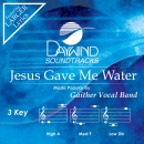 Jesus Gave Me Water image